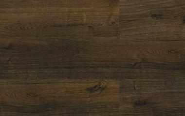 2023 ac4 8mm porter wood