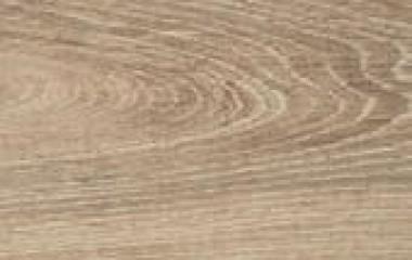 chameleon oak 2018 AC4 8MM